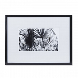 Картина Kelly Hoppen Black & White Palm Leaves 1206361